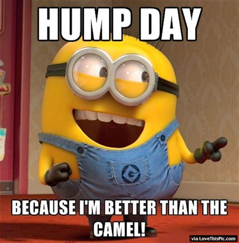 Hump Day Minion Pictures, Photos, and Images for Facebook, Tumblr, Pinterest, and Twitter