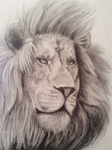 imagenes leones llorando leon my own dimension