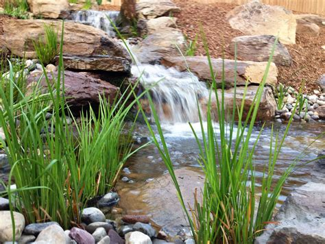 backyard fish pond ideas backyard fish pond ideas cool best garden ponds ideas on