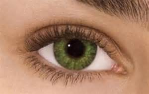 colored prescription contact lenses freshlook colorblends non prescription colored contact