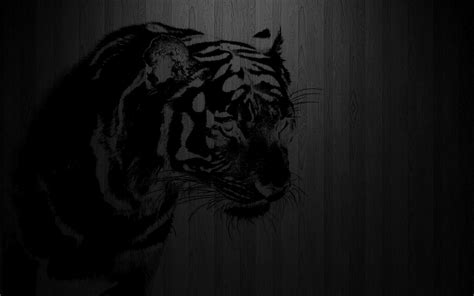 wallpaper hd black tiger black and white tiger wallpapers 67 wallpapers