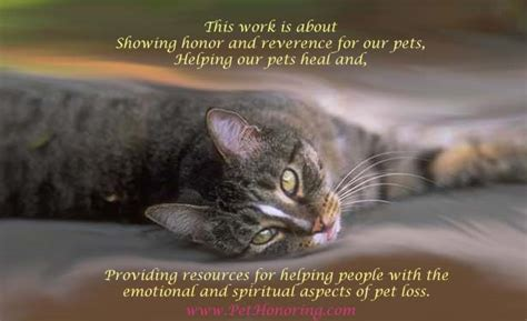 Prayer Of Comfort Death Pet Honoring Llc Honoring Our Pets And Our Relationship