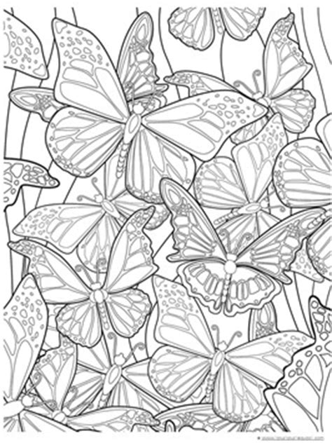 butterfly color pages butterfly coloring pages 1 1 1 1