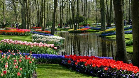 ashikaga flower park mundo maravilhoso wonderful world ashikaga flower park