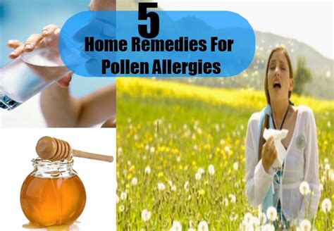 5 pollen allergies home remedies treatments and