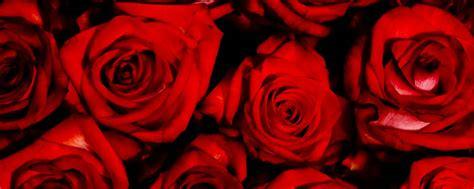 imagenes rojas tumblr los 12 aromas y olores m 225 s raros del vino area del vino