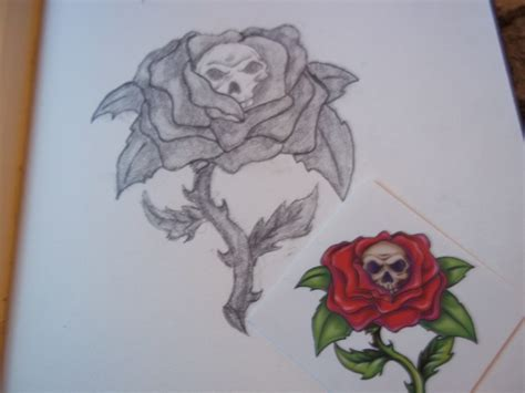Skull Inside Of A Rose Drawing Mischa 169 2019 May 21 2011