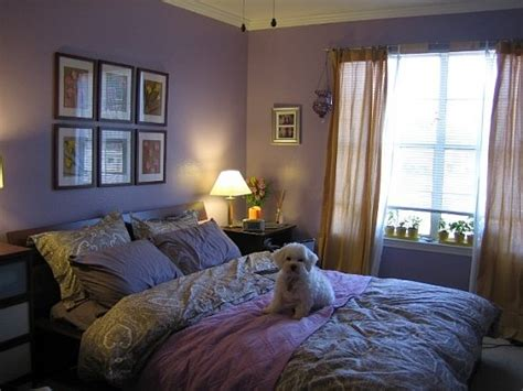 college bedrooms su casa purple post college bedroom popsugar home