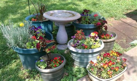 Hidrogel Beautiful Soil Plant how can i avoid spending a fortune on potting soil container plants beautiful and the o jays