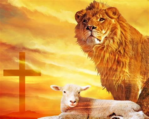 the lion and the the lion and the lamb a word with the word