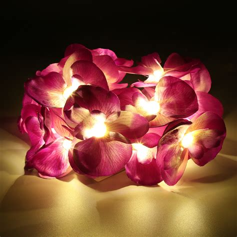 Warm White Led 3d Phalaenopsis Orchid Flower String Indoor Orchid String Lights