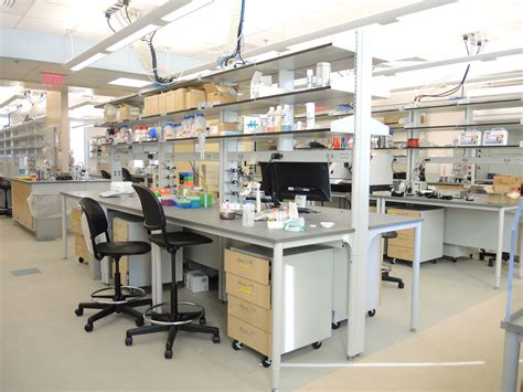 bench laboratory research bench laboratory research holden research group