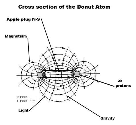 cross section of an atom index of images