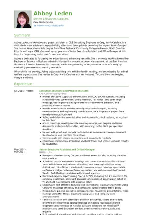 executive assistant resume sles visualcv resume sles database