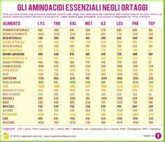 aminoacidi negli alimenti le propriet 224 nutrizionali dei legumi alimentazione