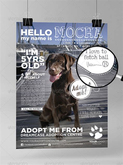 Animals Adopt Me Flyer By Dreamcase Graphicriver Adopt Me Flyer Template