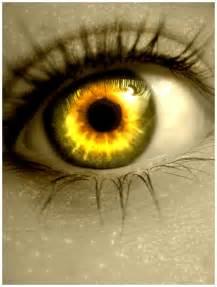 fotos fondos 187 ojos bonitos