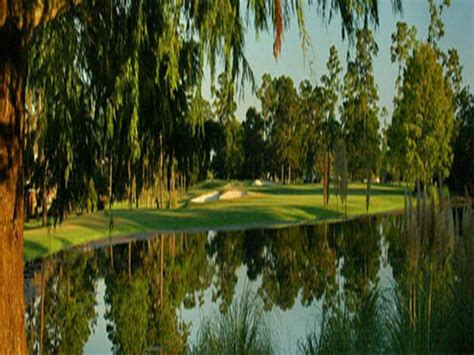walden bookstore houston walden on lake houston golf course living susan brown