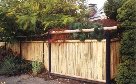 Backyard Bamboo Fencing by Boedika 90182 Sustainable Rolled Black Bamboo