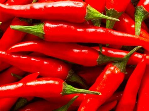 10 Foods To Get Your In A Spicy Mood by The World S Best Spicy Food Which Is Your Favourite