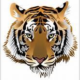Tiger Head PNG Clip Art - Best WEB Clipart
