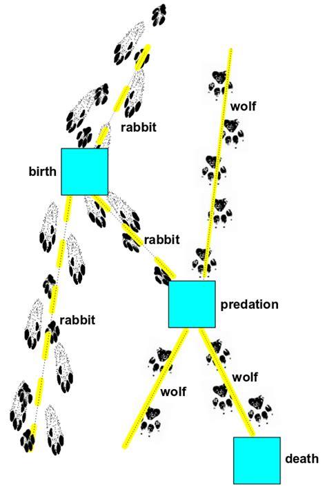 Feynman Diagram Drawer by Network Theory Part 8