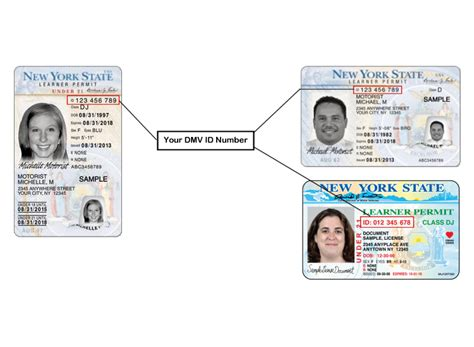 Find Drivers License Number Where To Find Your Client Id On Your Learner Permit New York State Of Opportunity