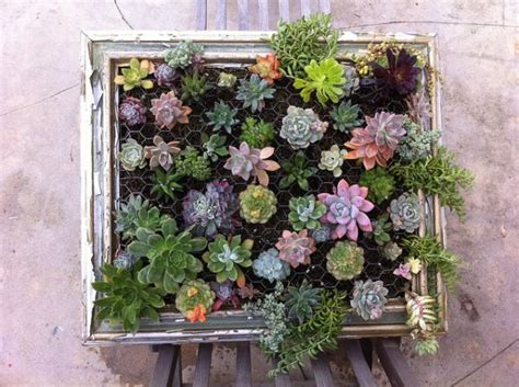 Vertical Garden Frames Cool Diy Green Living Wall Projects For Your Home