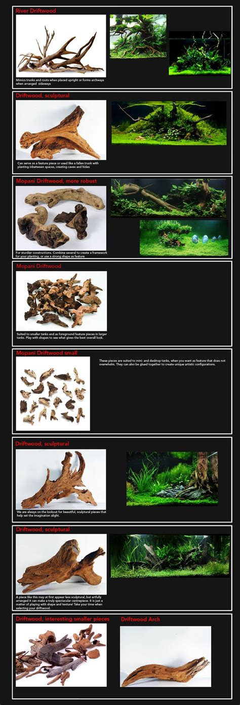 aquascaping guide best 20 driftwood for aquarium ideas on pinterest 1
