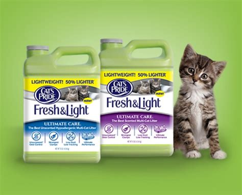 cat s pride fresh and light june is national adopt a shelter cat month see how you