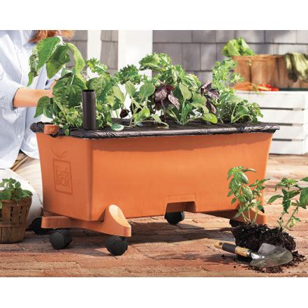 earthbox gardening system