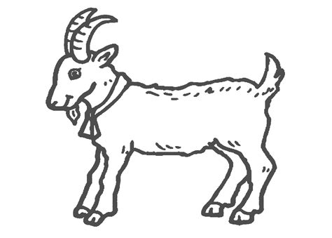 new year goat colouring sheets billy goat coloring page az coloring pages