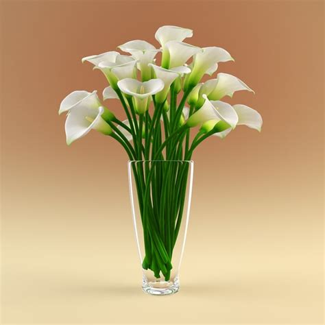 Flowers In A Vase Pictures by 3ds Max Vase Calla Flowers
