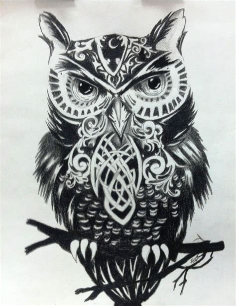 black and white owl tattoo black white owl illustrator unknown muse