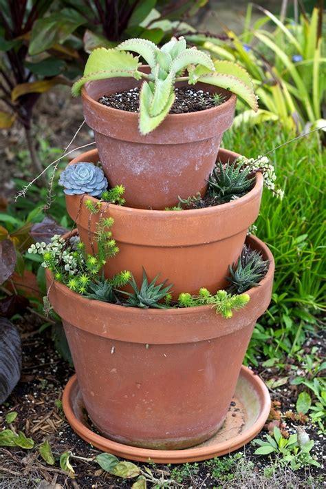 succulent pots cute succulent pots garden succulents pinterest