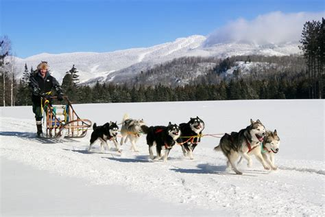 sledding canada sledding mont tremblant laurentian mountains canada