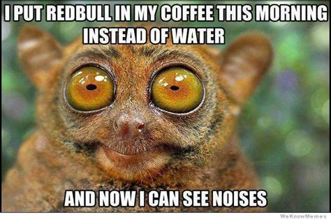 I Can See Sounds Meme - i put redbull in my coffee this morning weknowmemes