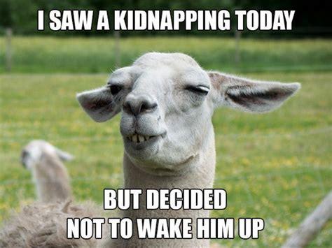Animal Pun Meme - lama clever saw kidnapping animal meme memes
