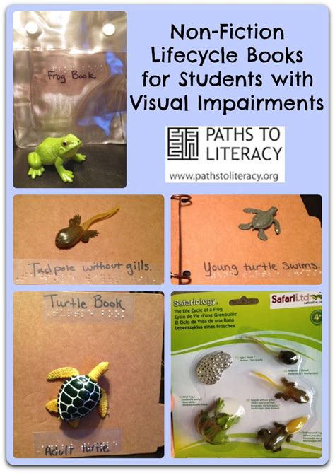 reference books on visual impairment 1000 images about adapting books for children who are