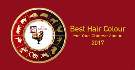 2017 chinese zodiac sign best hair colour for your chinese zodiac sign 2017