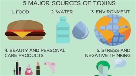 Symptoms Why You Should Detox by Why You Should Cleanse And Detox Your