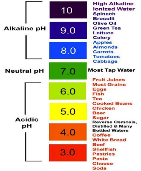 acid base ph scale acid base balance buffers by harsaan nithiananthan