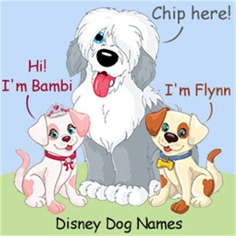 disney names for dogs 160 disney inspired names for dogs