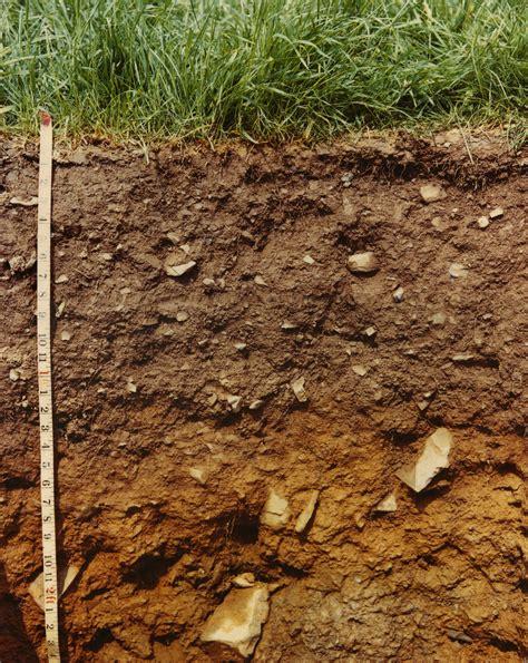 Le De Sol by Soils Guide Series