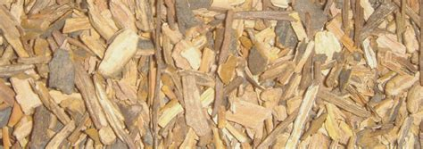licorice comforts healing herbal tea licorice