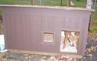 chew proof dog house official pit bull site of diane jessup