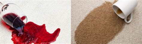 wine out of rug how to clean wine out of carpet