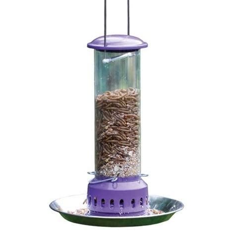 mealworm feeder plus seed tray 166 birds and bees