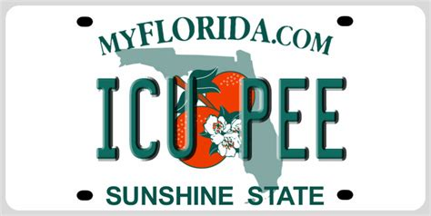 rejected florida license plates include per vert