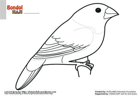 tutorial menggambar fauna kumpulan gambar flora fauna newhairstylesformen2014 com